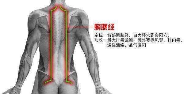 秋分时节膀胱经调理排毒防便秘